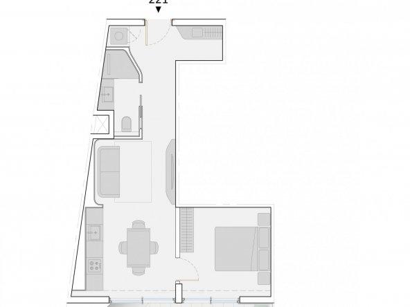 Apartment_221